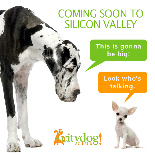 Coming Soon to Silicon Valley